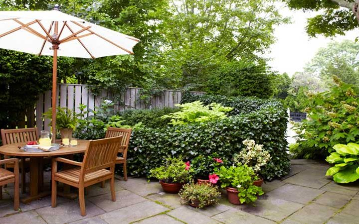Captivating Small Garden
