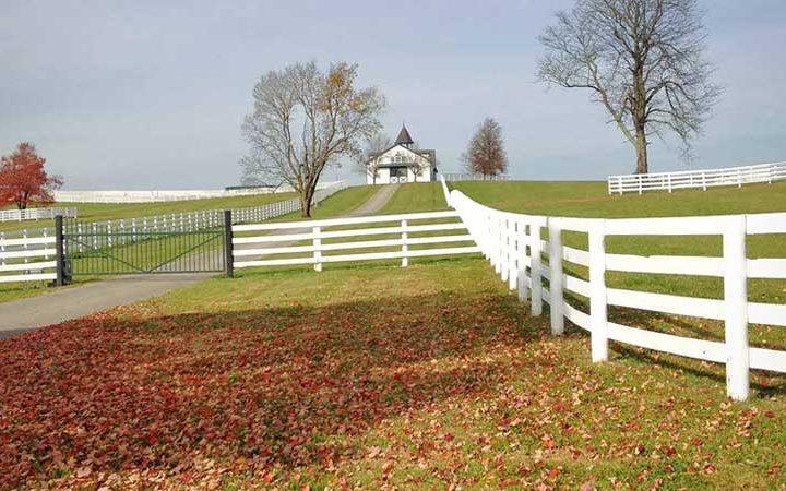 Fencing-Hobby-Farm